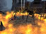 Hotu: Riesenspinnen